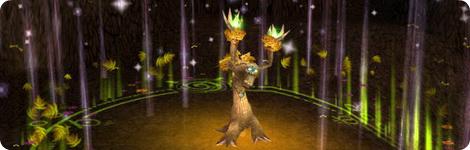 Druid Guide