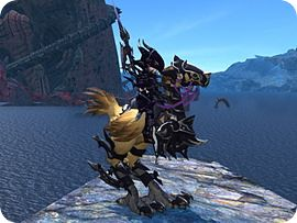 Chocobo Riding